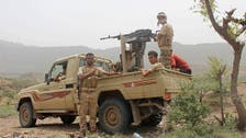 Dozens of Houthis killed in clashes with Yemeni army