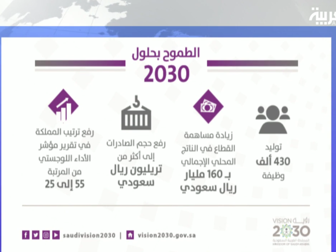 تعرف على تفاصيل أكبر برنامج في رؤية 2030