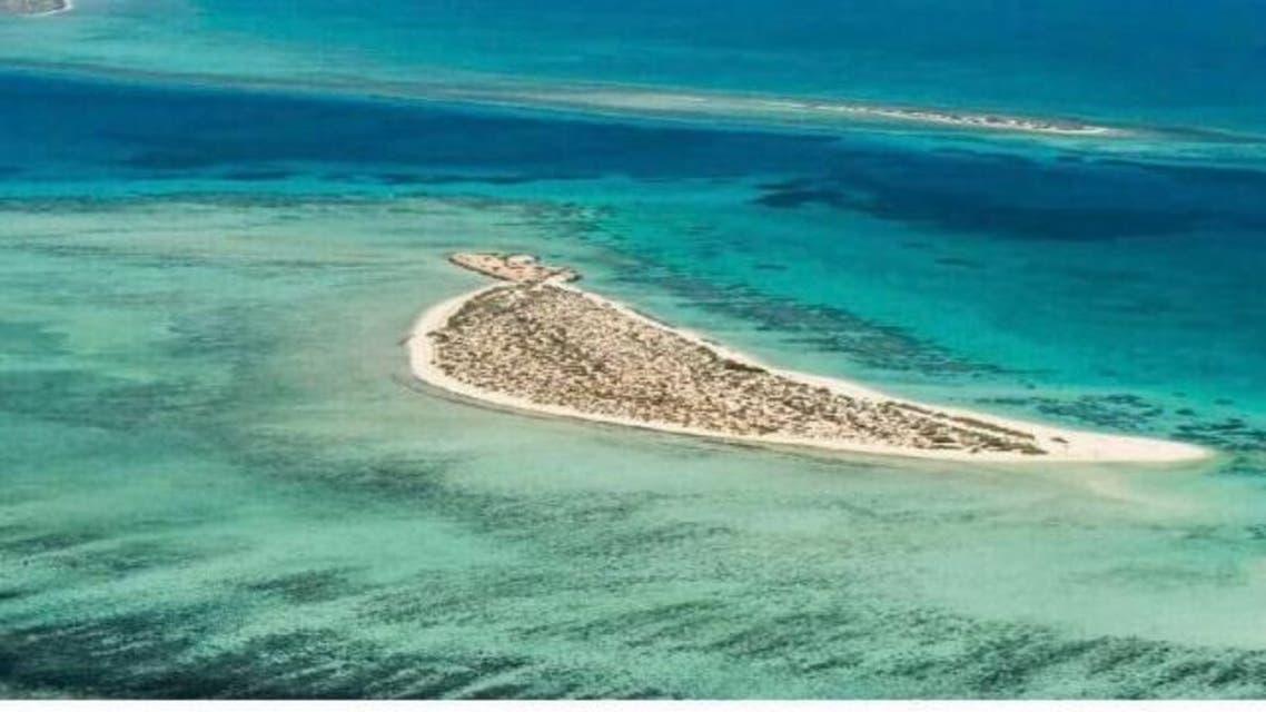 red sea islands reuters