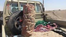 Houthis disguise mines as palm tree trunks near Yemen's Hodeidah