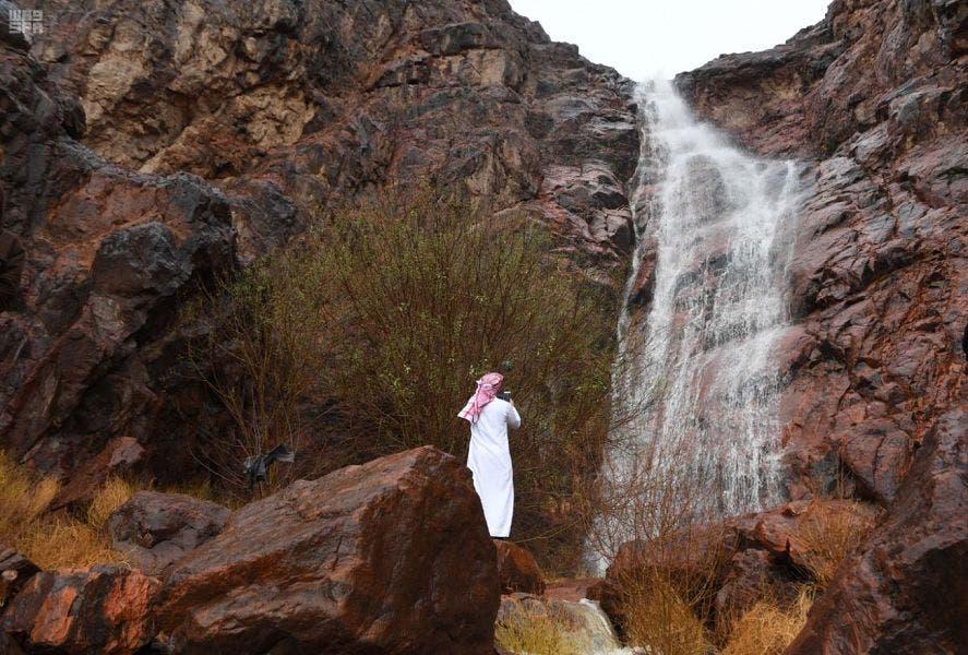 Saudi Medina nature rainfall 1 (Supplied)