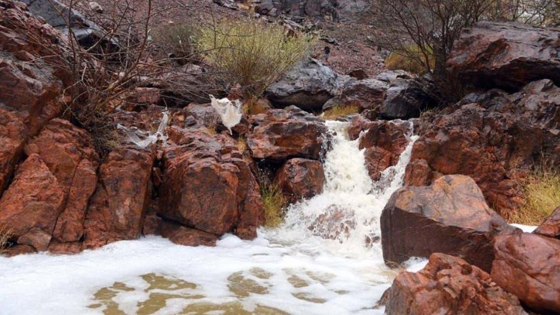 Saudi Medina nature rainfall 5 (Supplied)
