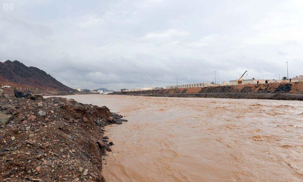 Saudi Medina nature rainfall 4 (Supplied)