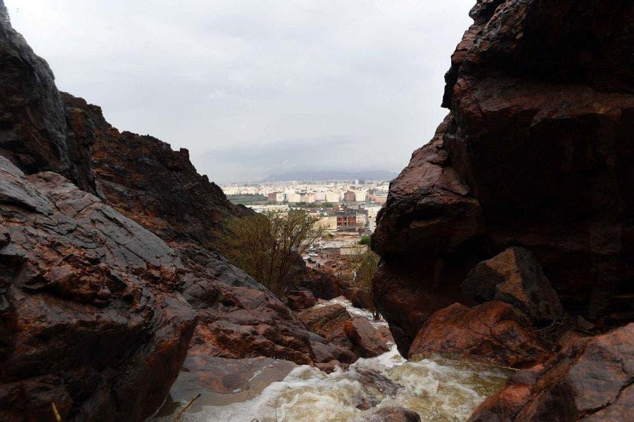 Saudi Medina nature rainfall 2 (Supplied)