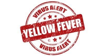 وفاة 10 في إثيوبيا بالحمى الصفراء ومنظمة الصحة تتحرك