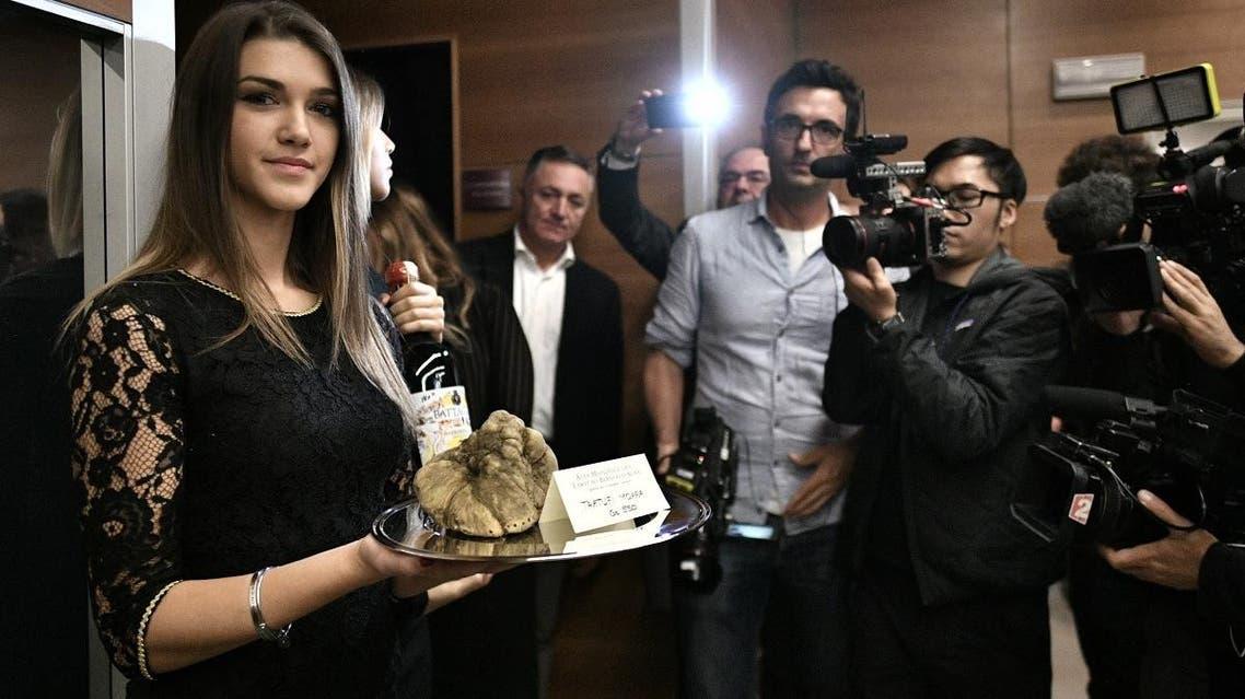 white truffle auction Italy, Alba (AFP)