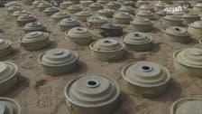 یمن کے مختلف شہروں میں حوثیوں کی بچھائی  سات ہزار بارودی سرنگیں تلف کردیں