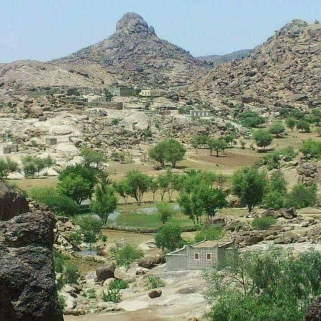 الجيش اليمني يتقدم في الملاجم بالبيضاء