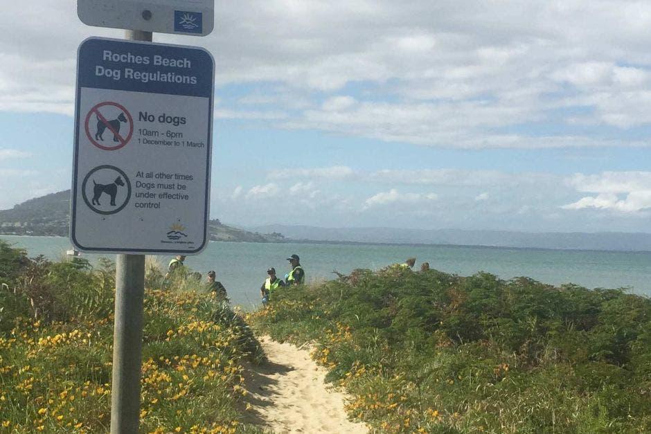 الشاطئ الذي وقعت فيه الحادثة، نقلاً عن ABC نيوز