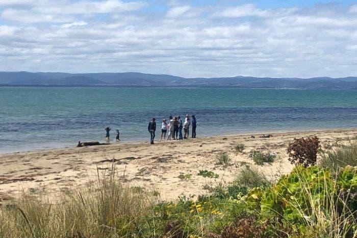 الشاطئ حيث وقعت الحادثة، نقلاً عن ABC نيوز