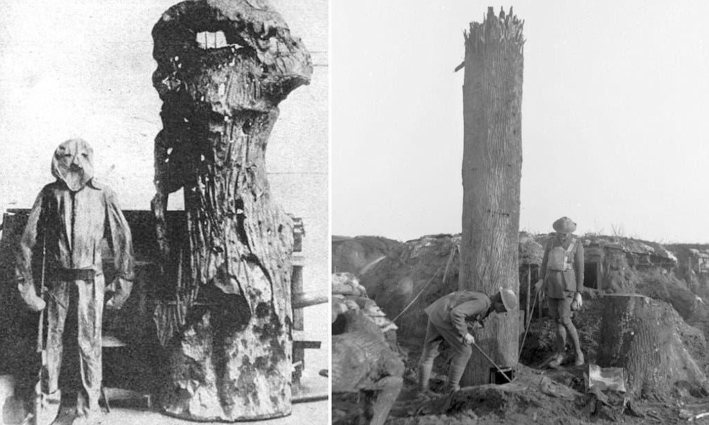 صورة لشجرة إصطناعية معتمدة للمراقبة خلال الحرب العالمية الأولى