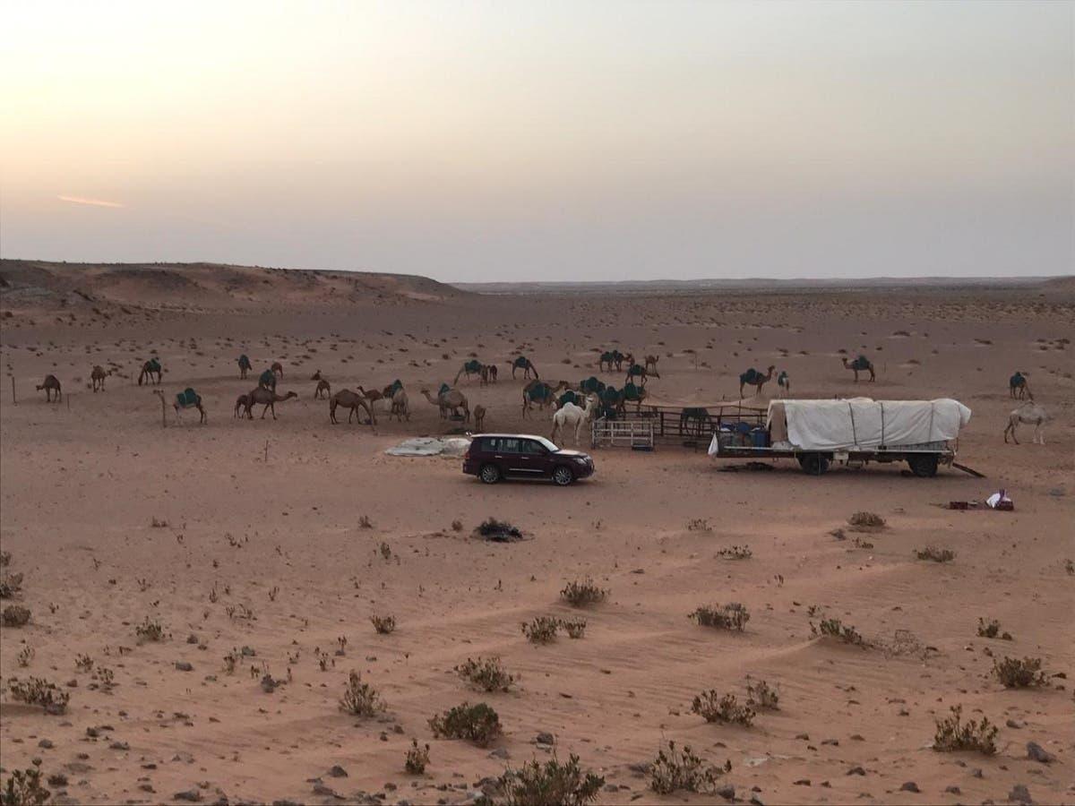 bedouin 7 (Supplied)