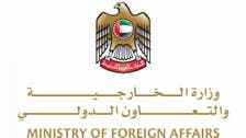 UAE says Turkish and Iranian military interventions violate Iraqi sovereignty