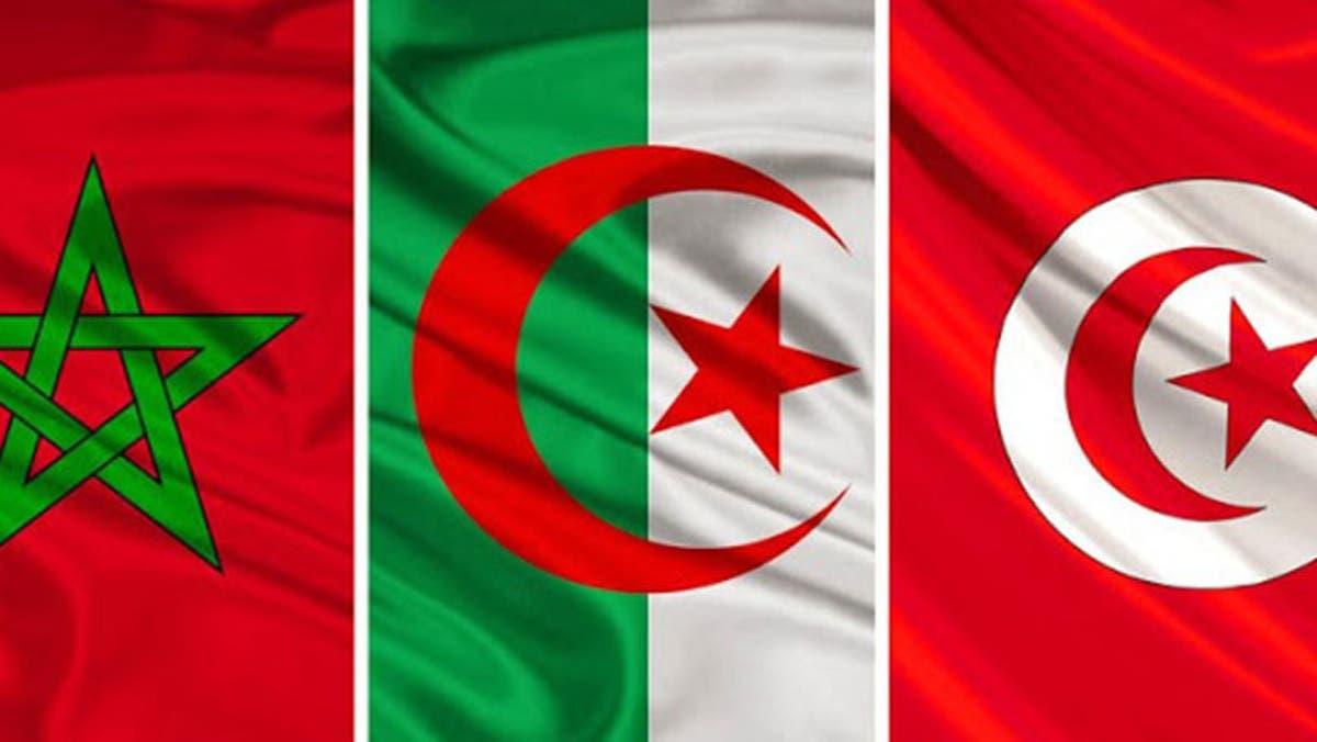 خليجيون يدعون لطرد تونس والجزائر والمغرب من العالم العربي.. ويرفضون إنتساب شمال إفريقيا لهم !