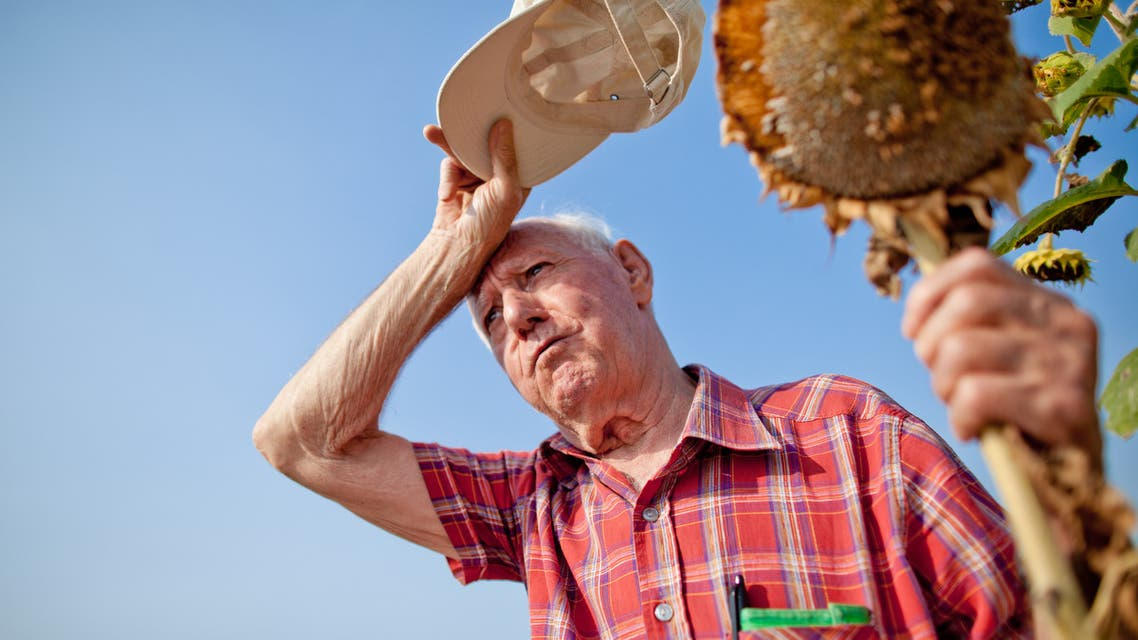 Concerned farmer - Stock image