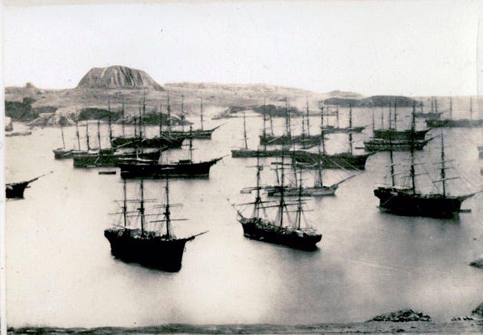 صورة لعدد من السفن الحربية الإسبانية قبالة جزر تشينتشا