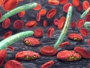 نهج جديد لمكافحة الملاريا يستهدف الكبد وليس الدم