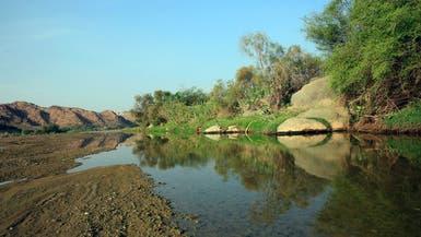 الوادي الأكبر في السعودية يجمع الصخر والخضرة والمياه