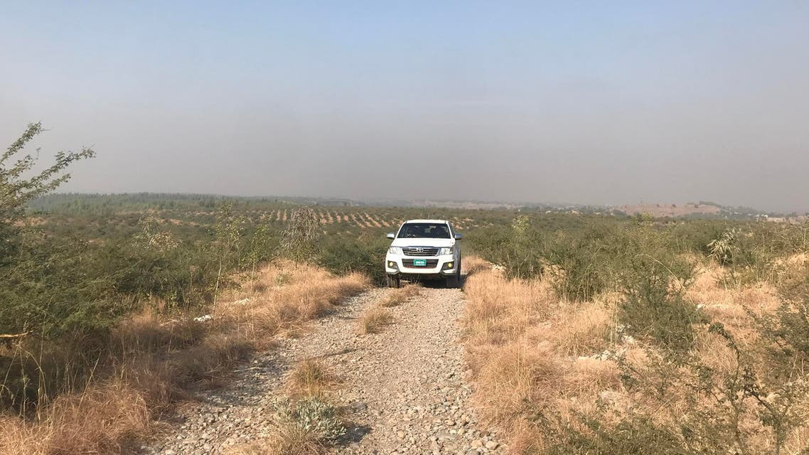 The Garhi Chandan tree plantation site near Peshawar. (Supplied)