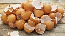انڈے کا چھلکا کھانے کے اہم فوائد !