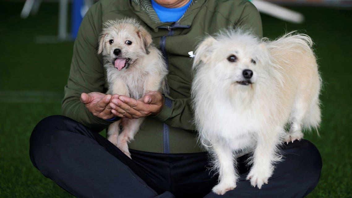 رئيسية Owner He Jun poses with his dogs, nine-year-old Juice and its two-month-old clone, at his pet resort in Beijing, China November 26, 2018. Picture taken November 26, 2018. REUTERS/Jason Lee