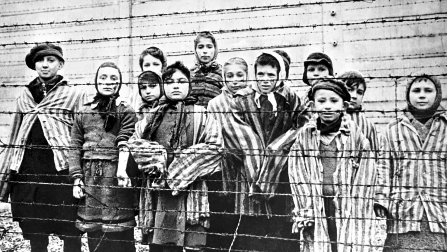 صورة لعدد من الأطفال اليهود داخل معسكر أوشفيتز للإبادة