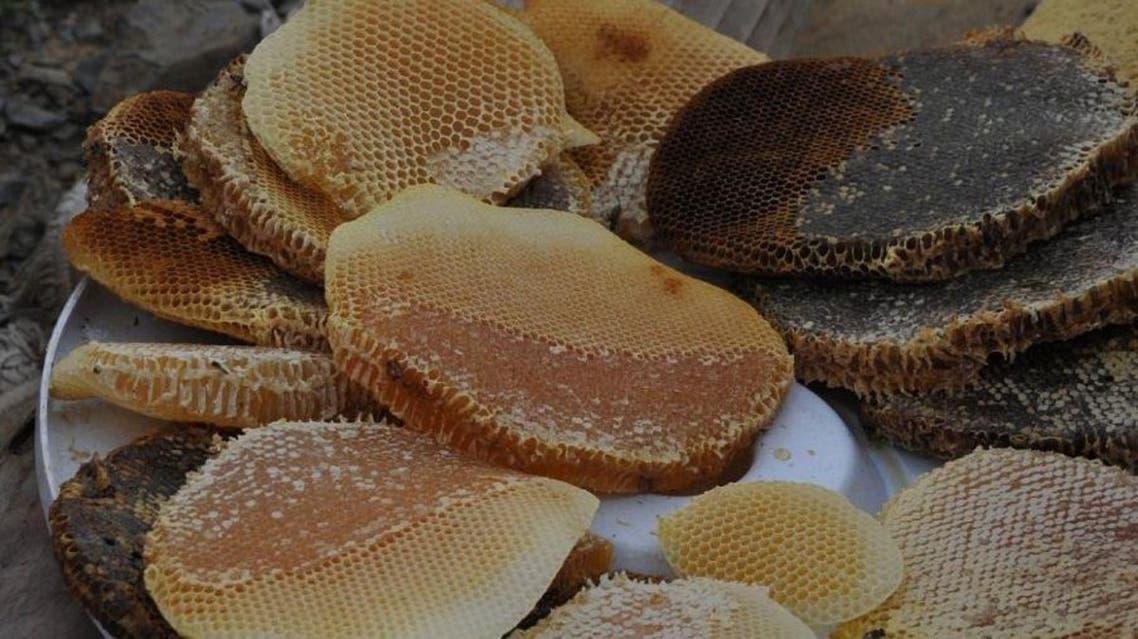 Honey beekeeping Saudi Jazan. (Supplied)