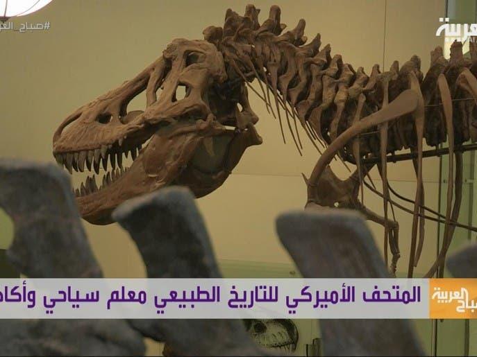 #السياحة عبر العربية : ديناصورات في نيويورك