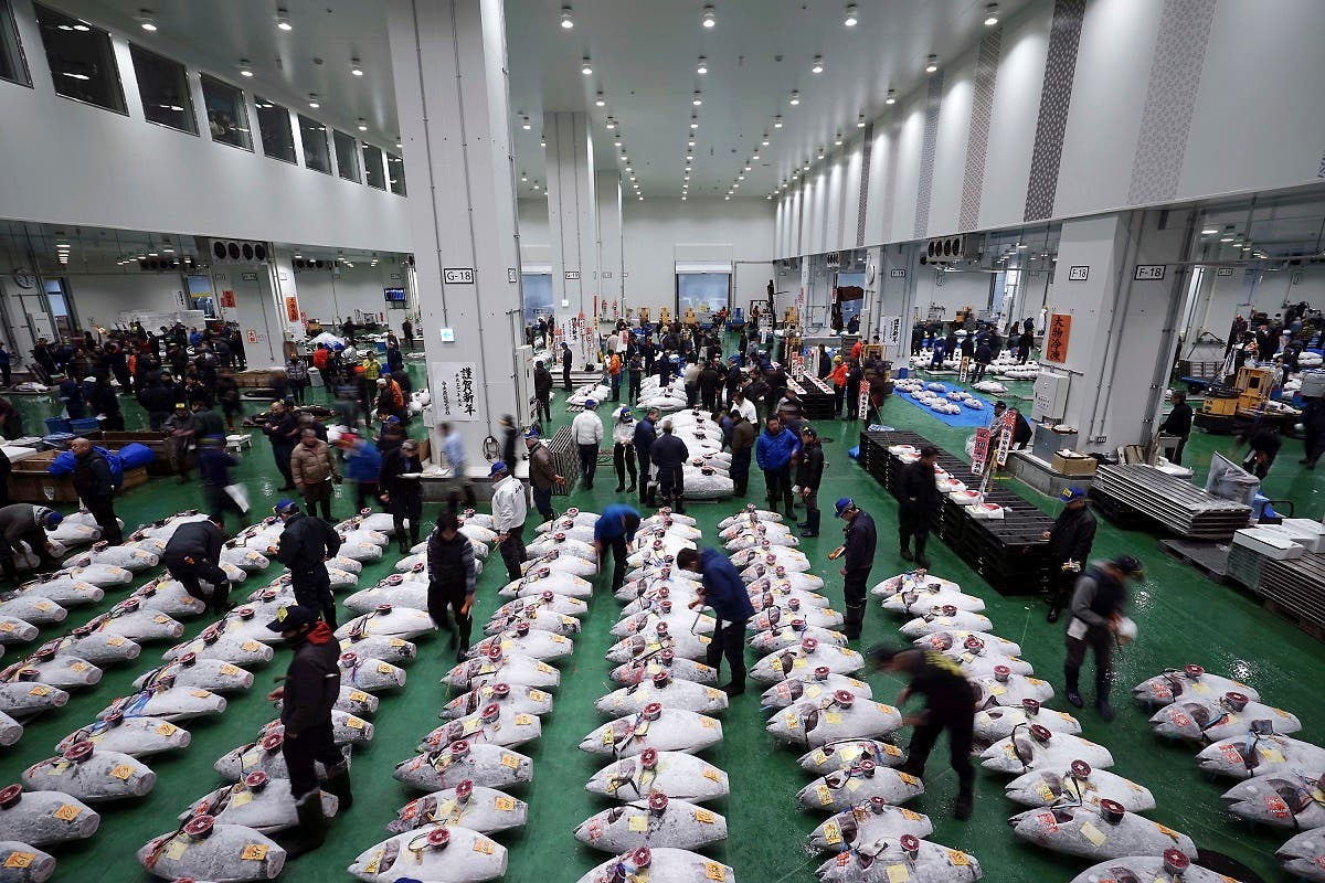 Tuna auction Japan. (AP)
