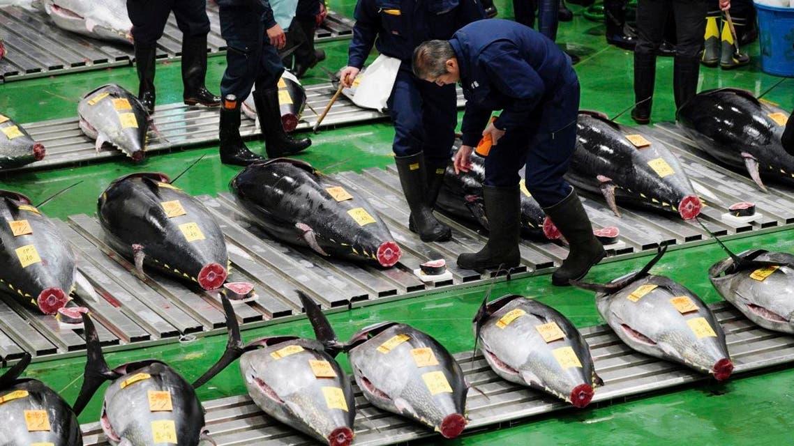 Tuna auction Japan. (AP)