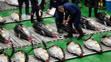 Bluefin tuna sold for $3 million in auction at Tokyo fish market