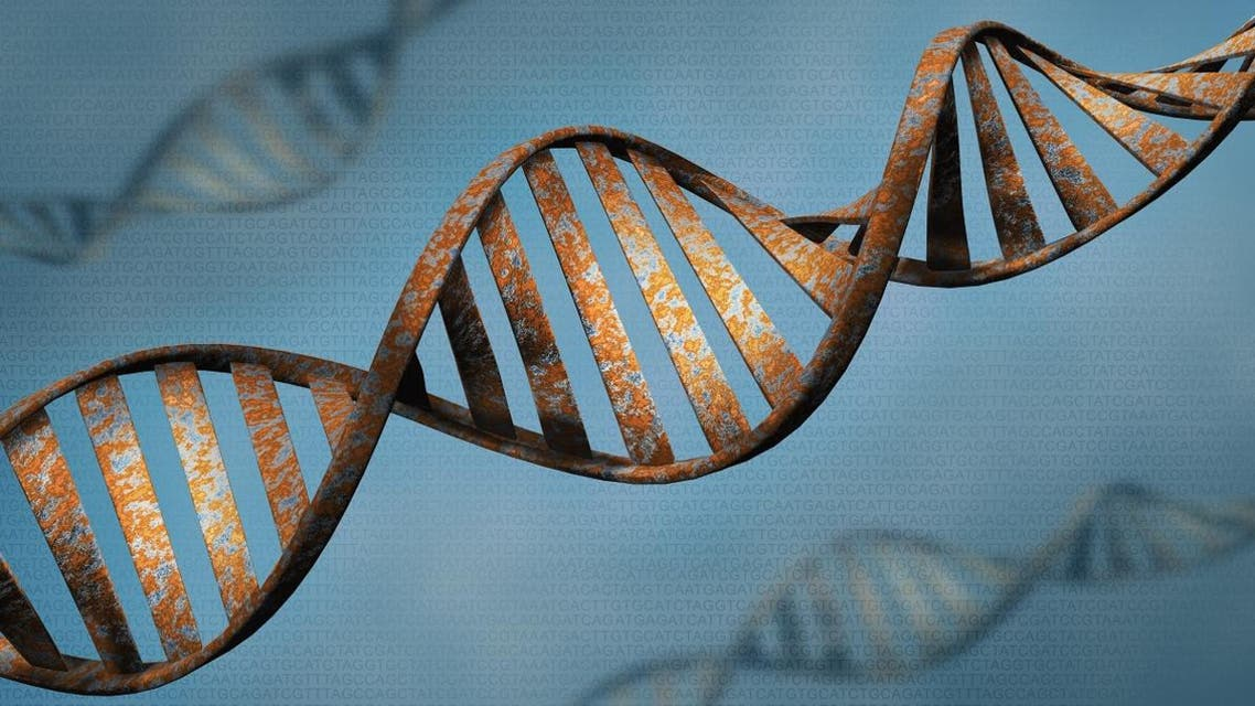 Biotechnology concept of old DNA and protein letter background, rust DNA and protein sequence 3d render - Illustration - Illustration Shutterstock