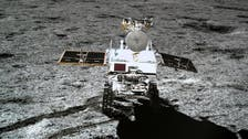 In first, seed carried by China to the moon has sprouted