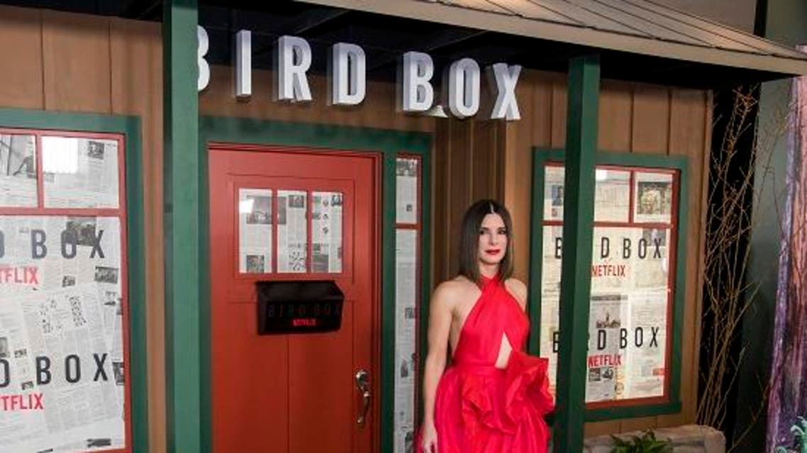 bird box ap