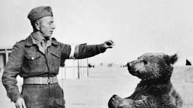 """من هو """"الدب الجندي"""" الذي التحق بالجيش البولندي؟"""