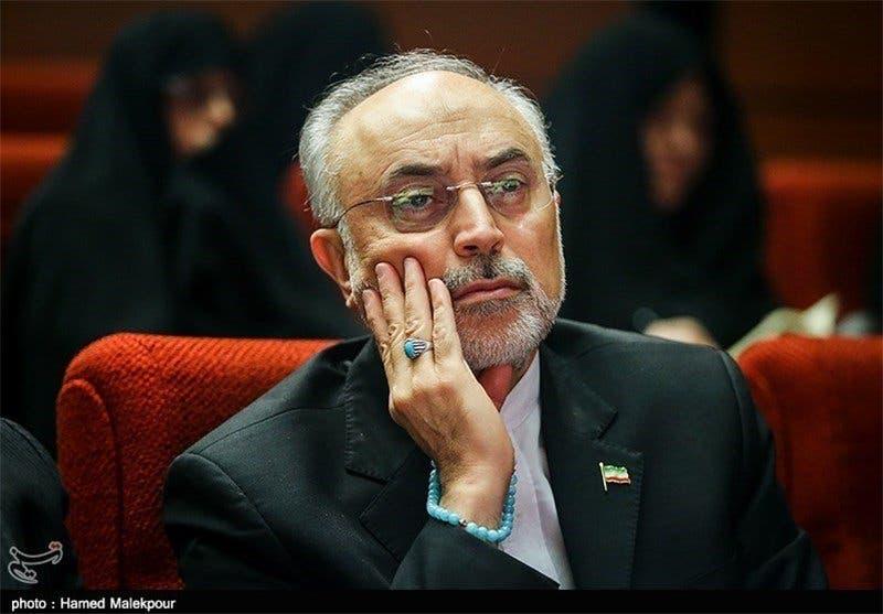 علي أكبر صالحي رئيس وكالة الطاقة الذرية الإيرانية