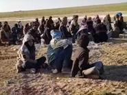 بالفيديو.. عشرات الدواعش يسلمون أنفسهم بعد محاصرتهم