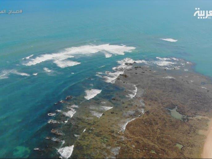 شاطئ سلفادور دي باهيا يشتهر بصفاء مياهه وكثرة شعبه المرجانية