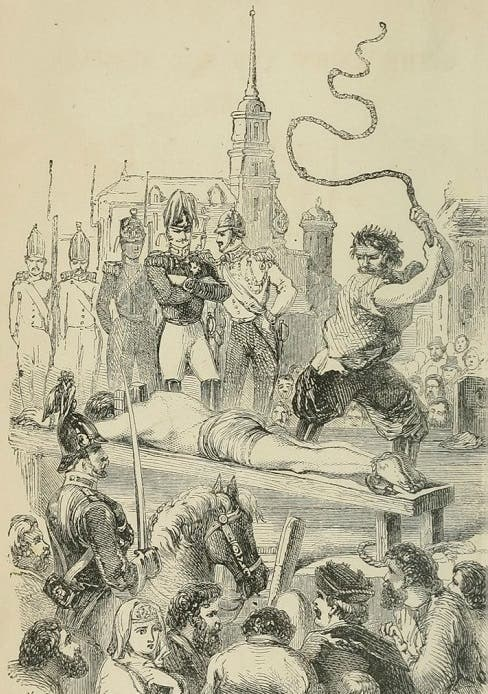 صورة لإحدى عمليات التعذيب بإستخدام الكنوت الروسي