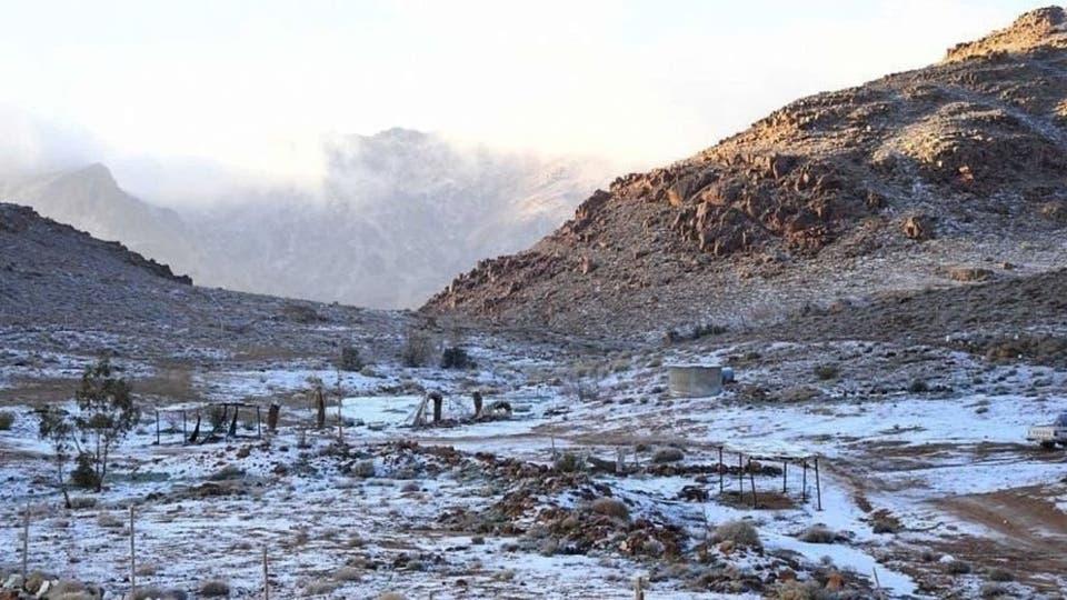 في السعودية الضيف الأبيض يزين جبال اللوز