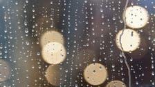 هل تتخيل هذا العالم من دون المطر؟