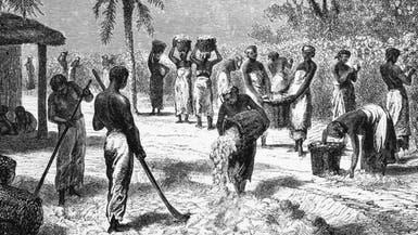 كيف ساهمت الحرب الأهلية الأميركية في تقدّم مصر؟