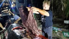 Dead whale in the Philippines had 40 kilograms of plastic in its stomach