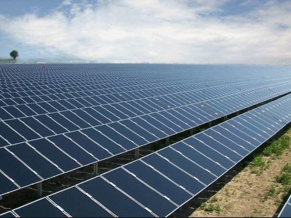 كايرو سولا: 10% من المصانع المصرية تمتلك محطات شمسية خلال 5 سنوات