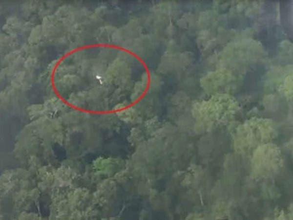 بالصور.. هبوط اضطراري لطائرة على أشجار في غابة الأمازون