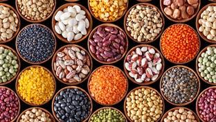 مصر توقف تصدير البقوليات 3 أشهر لمواجهة كورونا