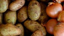 مع تفاقم الأزمة الاقتصادية.. إيران تحظر تصدير البصل والبطاطس