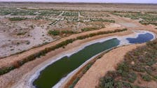 It is time to address water and food scarcity in NENA