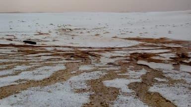 بعز الربيع.. الثلج يكسو صحراء الدهناء بالسعودية