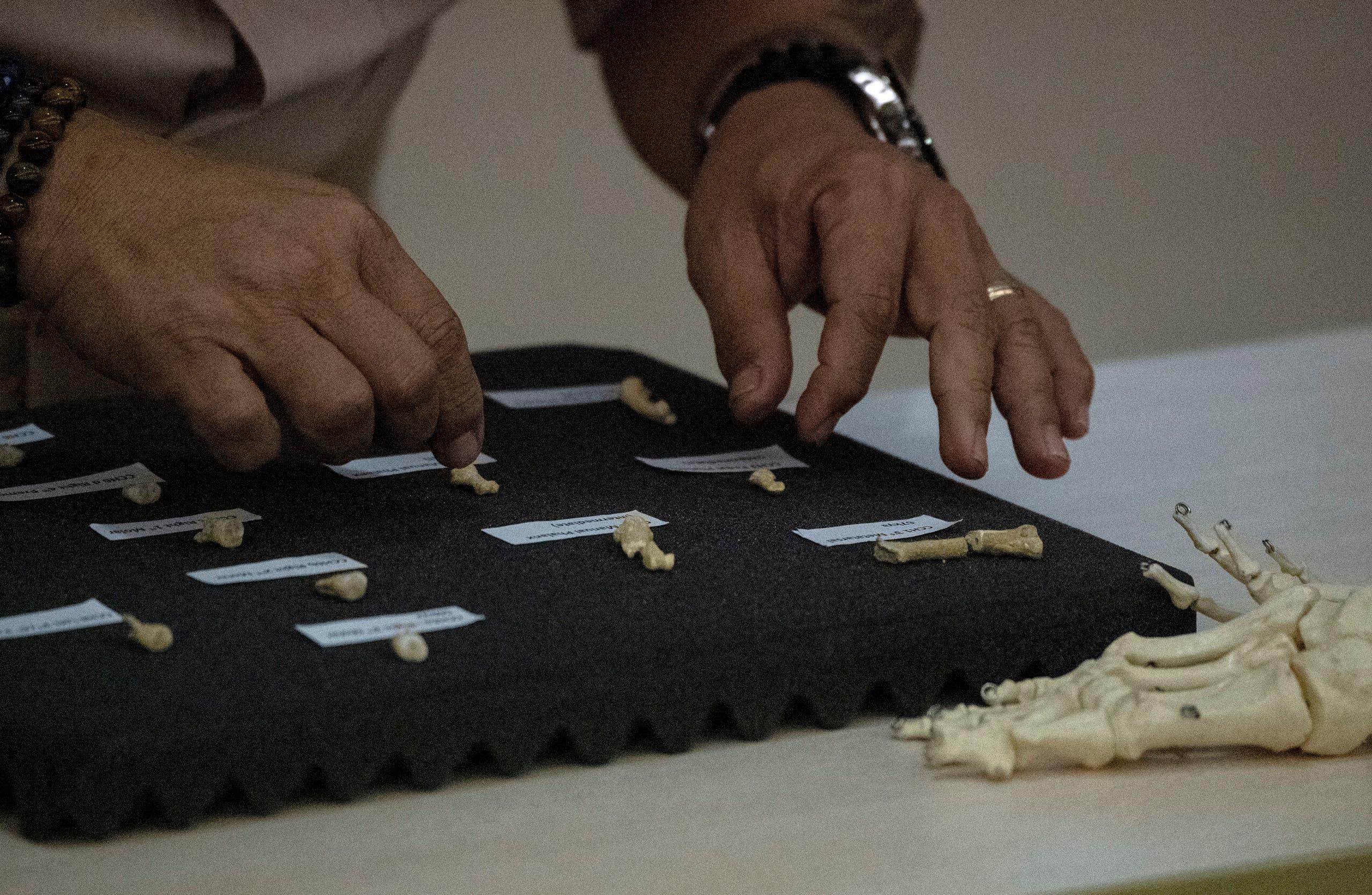 اكتشاف نوع جديد من الكائنات البشرية عاش في الفلبين
